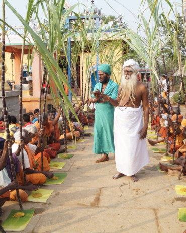 Sugarcane and food are distributed on Pongal day at Brahmarishi Hill